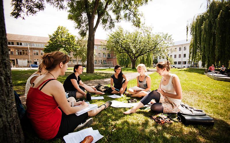 Konzentriertes Arbeiten in Gruppen, wo andere entspannen