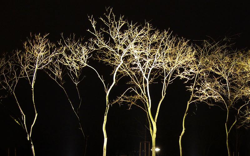 Optische Gestaltung: Arbeiten mit Licht