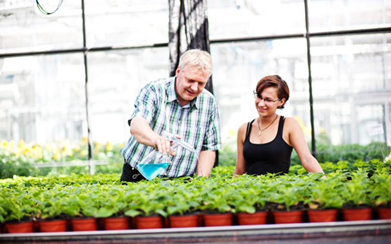 Ernährung der Pflanzen - Praktikum im 3. Semester des Bachelorstudiums Gartenbau