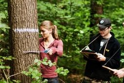 Forstwirtschaft Studium | Ökosystemmanagement studieren