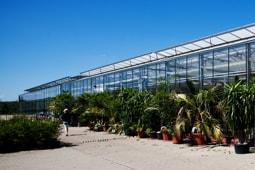 Gartenbau Studium in Erfurt | Werde Gartenbauingenieur!